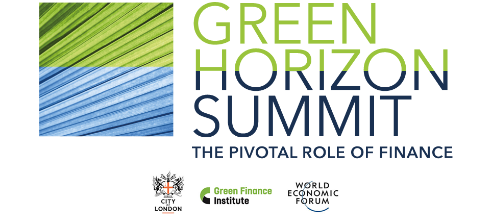 Master's Blog: The Green Horizon Summit